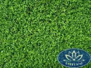cỏ nhân tạo sân golf Gomic610