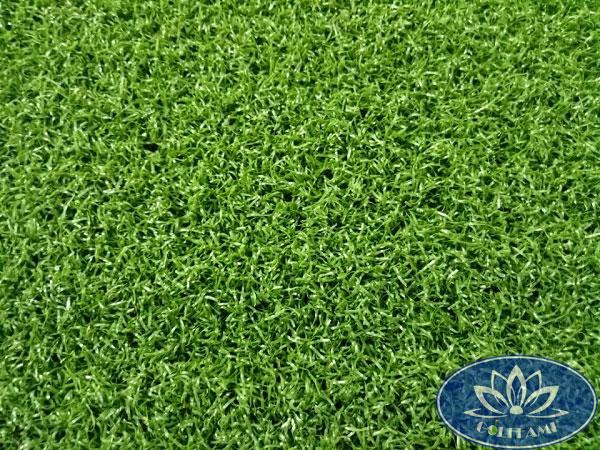 cỏ nhân tạo sân golfGomic69