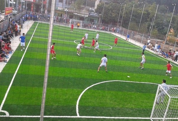 Sân bóng đá cỏ nhân tạo 7 người