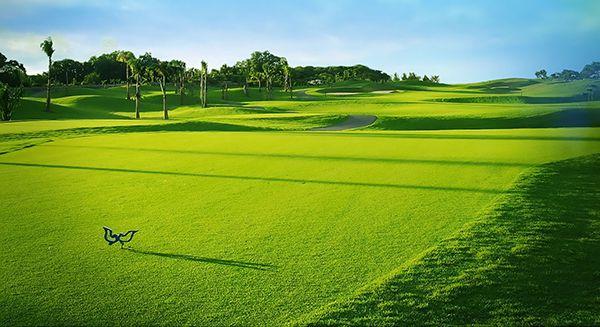 Sân Golf Twin Doves Bình Dương