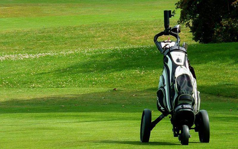 golf Buggy là gì