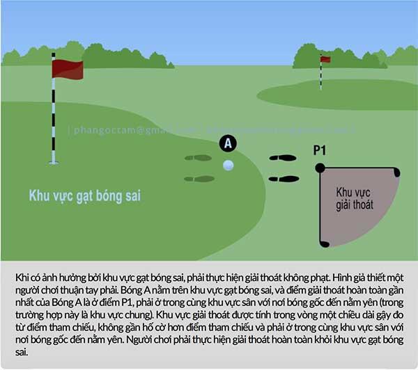 Phải làm sao khi bóng golf on sai green